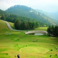 Explore Shimla With Naldehra